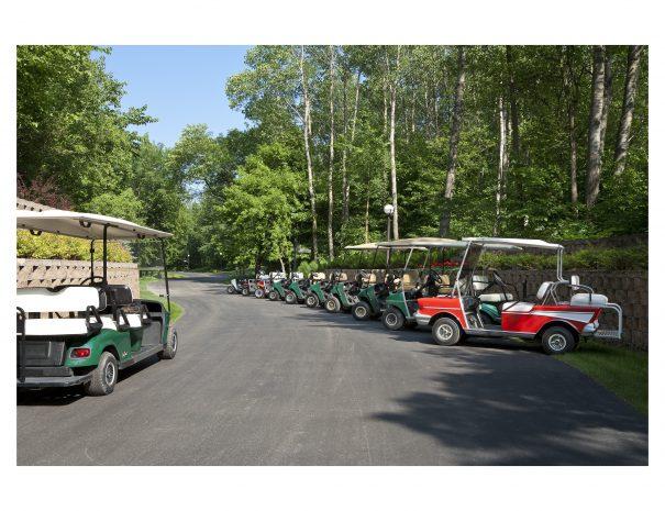 Golf Carts 01